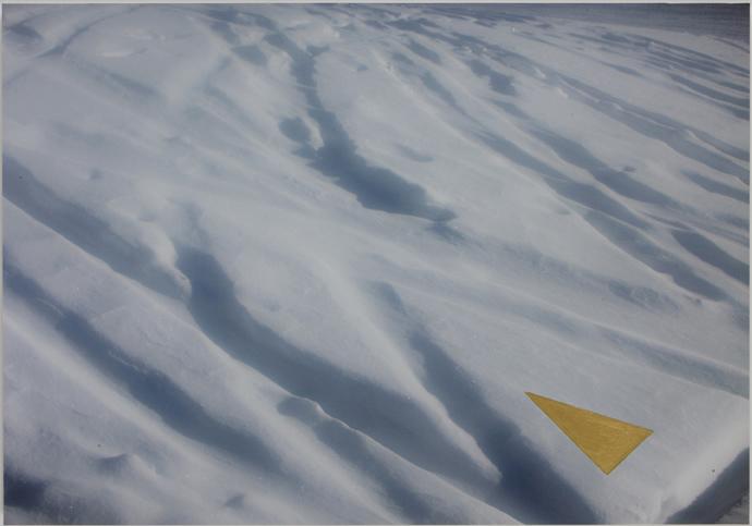 Geometrie di neve